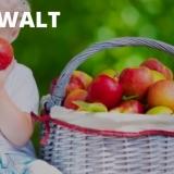 Van der Walt Dental Surgery