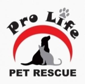 Pro Life Pet Rescue